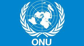 Financiamiento para el Desarrollo ¿La ONU privatiza el desarrollo?